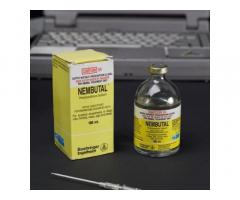 BUY NEMBUTAL ONLINE ( PILLS LIQUID & POWDER )